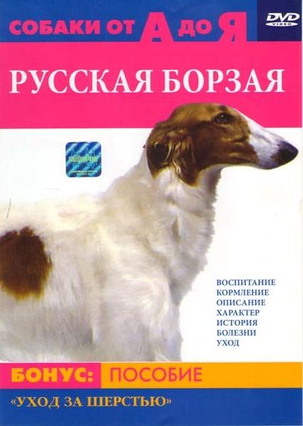 Собаки от А до Я Русская Борзая
