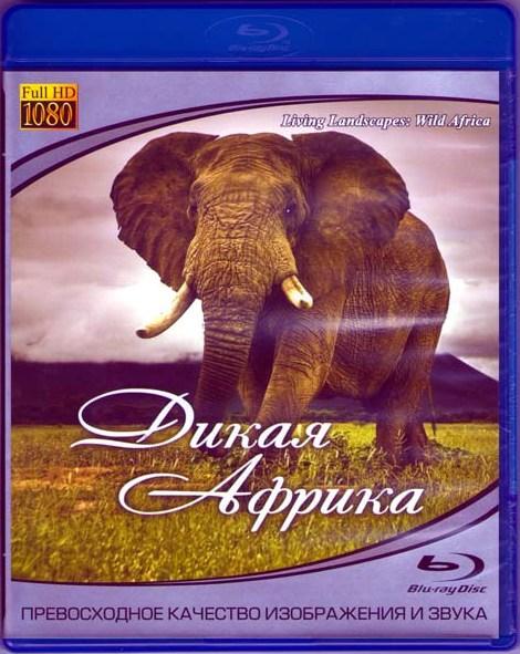 Дикая Африка (Blu-ray)