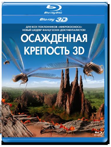 Осажденная крепость 3D 2D (Blu-ray)